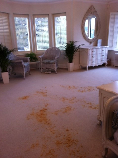 Dry cleaning sisal