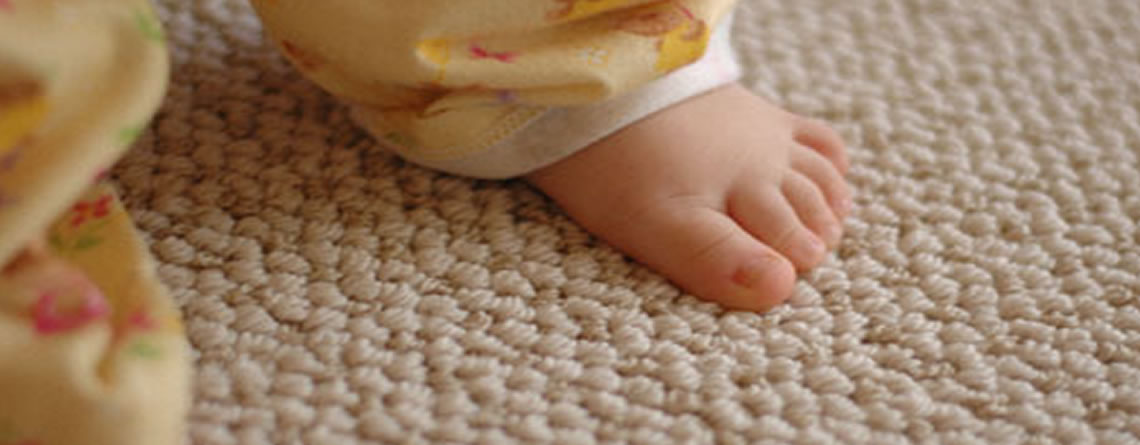 Carpet Cleaning in Brighton and Hove & Eastbourne, Sussex