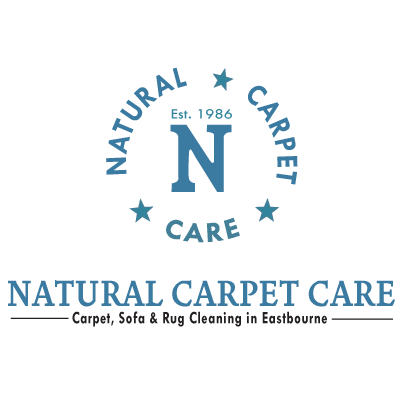 new cleaning logo