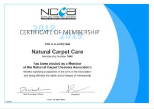 NCCA members
