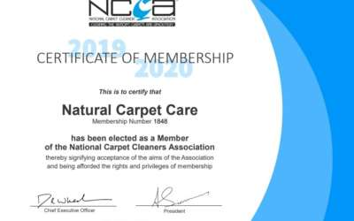 Certified carpet, rug and sofa cleaning certification