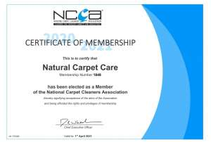 rug cleaning qualification certificate