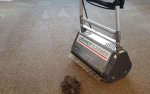 carpet cleaning agitator